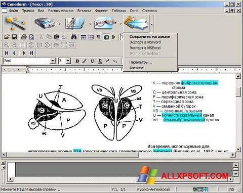 Ảnh chụp màn hình CuneiForm cho Windows XP