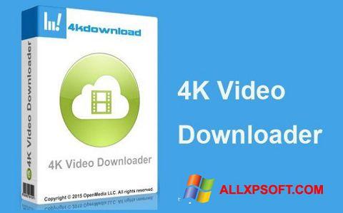 Ảnh chụp màn hình 4K Video Downloader cho Windows XP