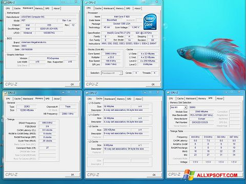 Ảnh chụp màn hình CPU-Z cho Windows XP