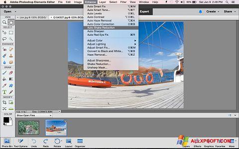 Ảnh chụp màn hình Photoshop Elements cho Windows XP